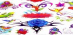 birdlizard-a