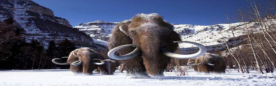 Mammoth-a