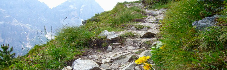Mountain Path-a