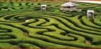 maze-a